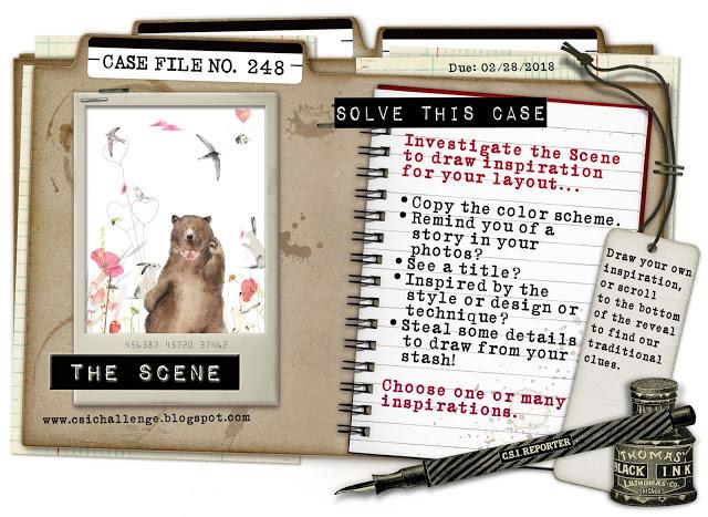 CSI 248 Case File